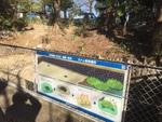 カメの産卵場所説明看板